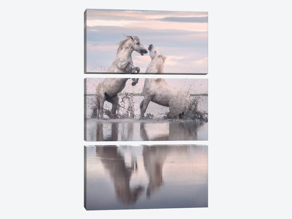 White Angels Of Camargue XXXIII by Daniel Kordan 3-piece Canvas Print