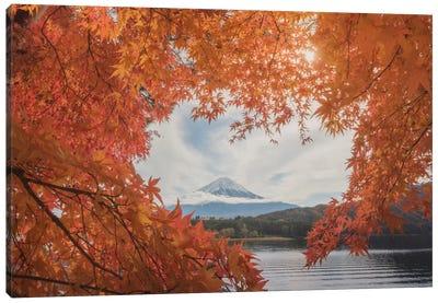 Autumn In Japan XXI Canvas Art Print