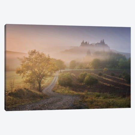 Autumn In Tuscany VI Canvas Print #KRD35} by Daniel Kordan Canvas Art