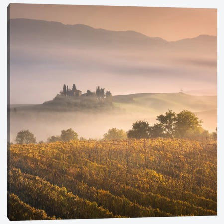Autumn In Tuscany VII Canvas Print #KRD36} by Daniel Kordan Canvas Wall Art