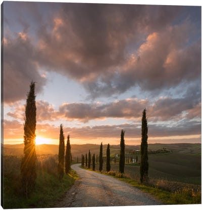 Autumn In Tuscany X Canvas Art Print