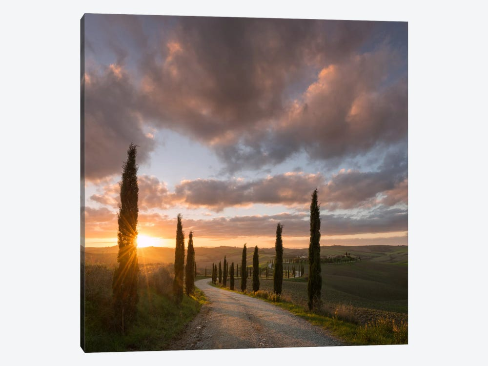 Autumn In Tuscany X 1-piece Art Print