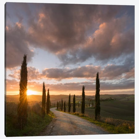 Autumn In Tuscany X Canvas Print #KRD39} by Daniel Kordan Canvas Print
