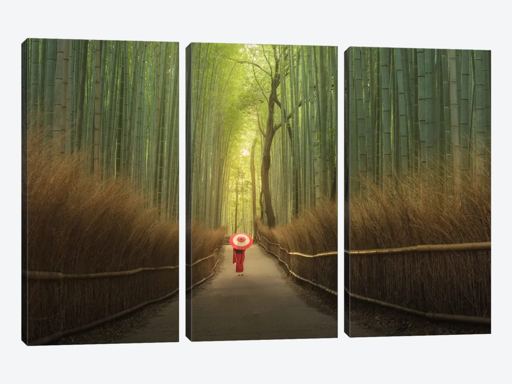 Bamboo Forest In Japan by Daniel Kordan 3-piece Art Print