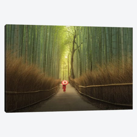 Bamboo Forest In Japan Canvas Print #KRD42} by Daniel Kordan Canvas Art