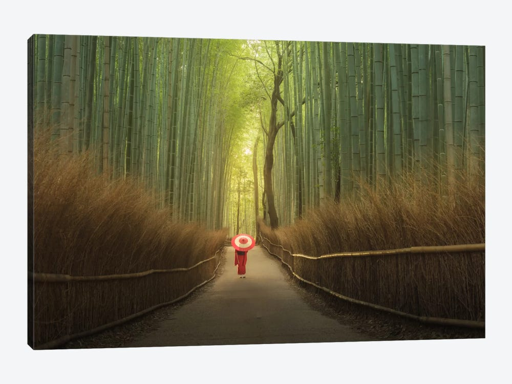 Bamboo Forest In Japan by Daniel Kordan 1-piece Canvas Print