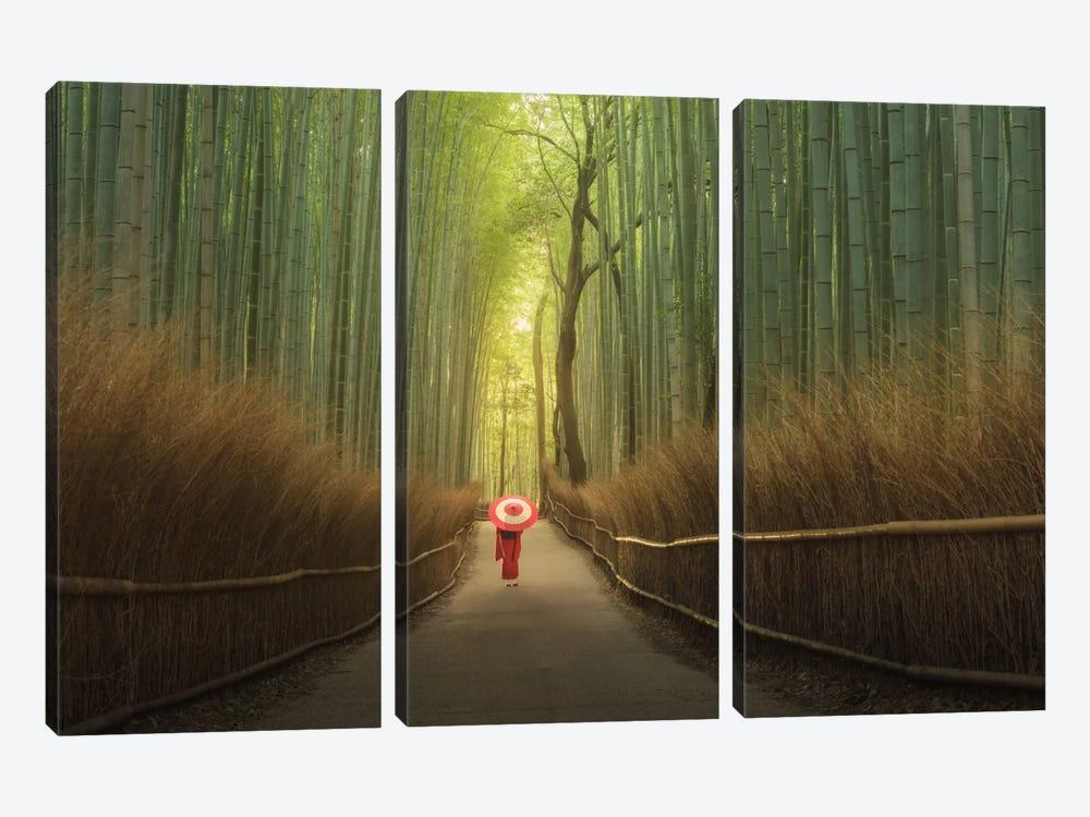 Bamboo Forest In Japan by Daniel Kordan 3-piece Art Print