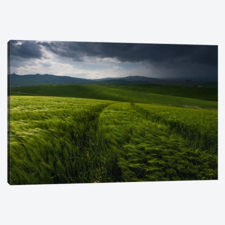Before The Tuscany Storm Canvas Print #KRD43} by Daniel Kordan Canvas Artwork