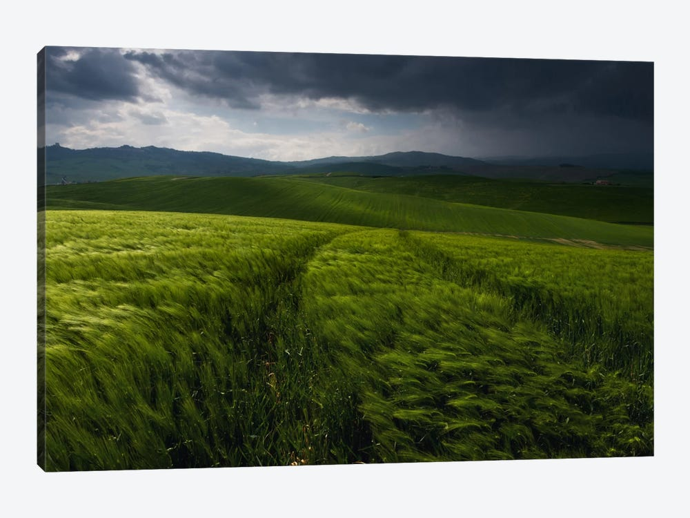 Before The Tuscany Storm by Daniel Kordan 1-piece Canvas Wall Art