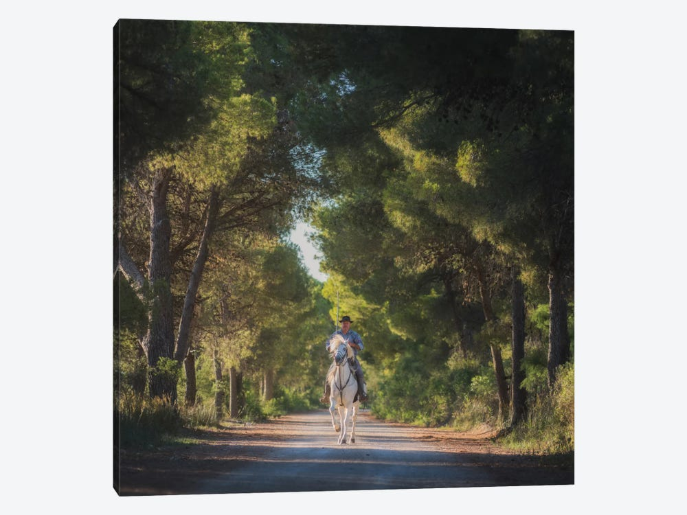 Camargue by Daniel Kordan 1-piece Canvas Art Print