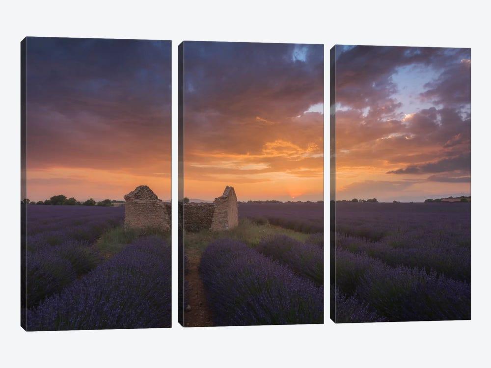 Lavender Fields Of Provence II by Daniel Kordan 3-piece Canvas Artwork