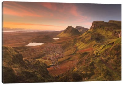 Scotland II Canvas Art Print