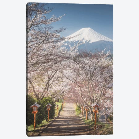 Spring In Japan I Canvas Print #KRD60} by Daniel Kordan Canvas Artwork