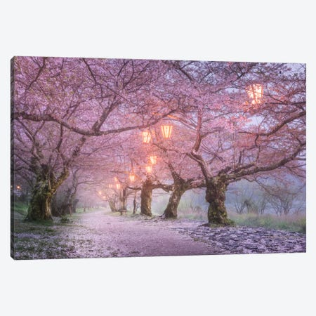 Spring In Japan III Canvas Print #KRD62} by Daniel Kordan Canvas Artwork