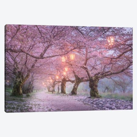 Spring In Japan III Canvas Print #KRD62} by Daniel Kordan Canvas Artwork
