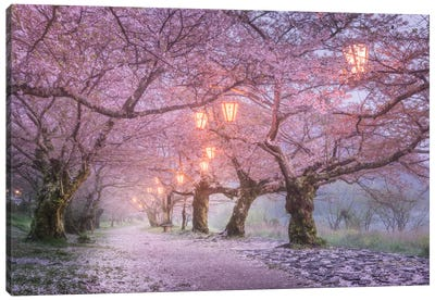 Spring In Japan III Canvas Art Print
