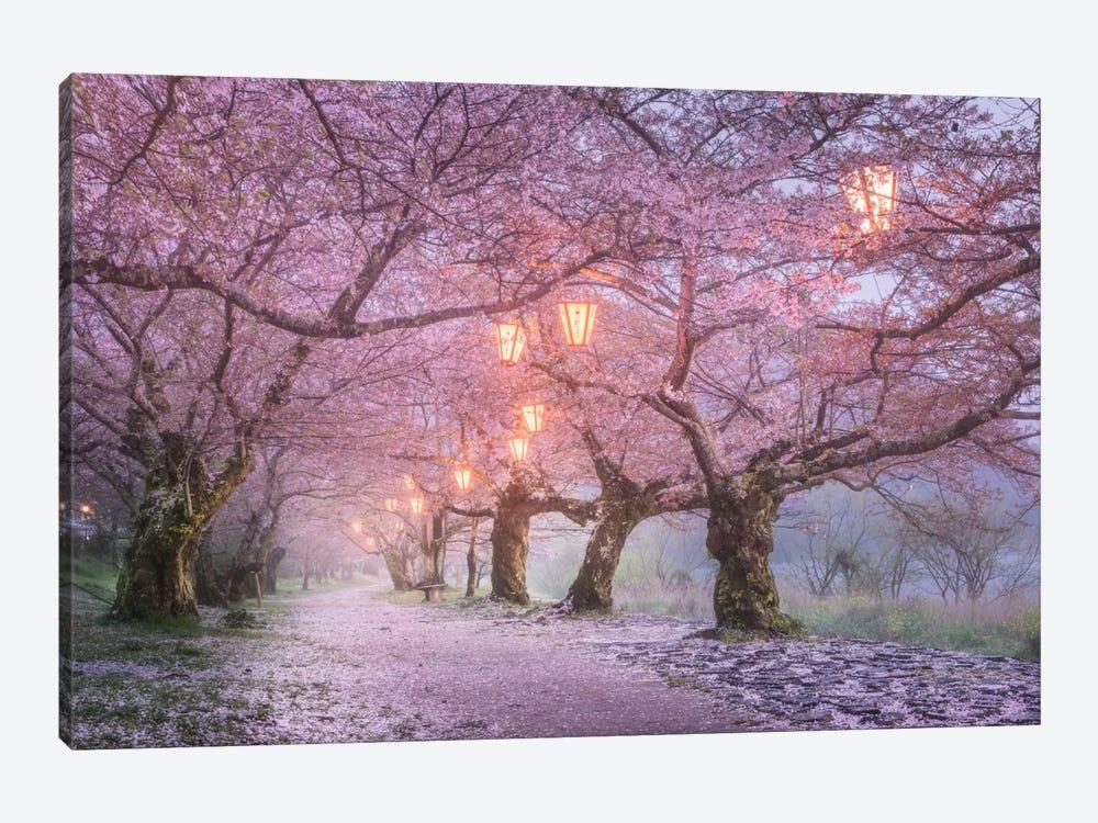 Spring In Japan III by Daniel Kordan 1-piece Canvas Print