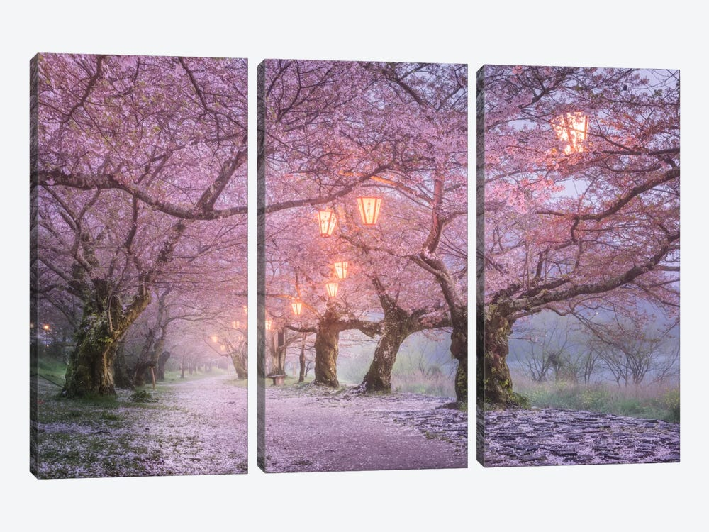 Spring In Japan III by Daniel Kordan 3-piece Art Print