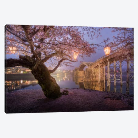 Spring In Japan V Canvas Print #KRD64} by Daniel Kordan Canvas Art Print