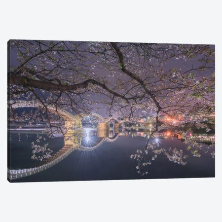 Spring In Japan VI Canvas Print #KRD65} by Daniel Kordan Canvas Print