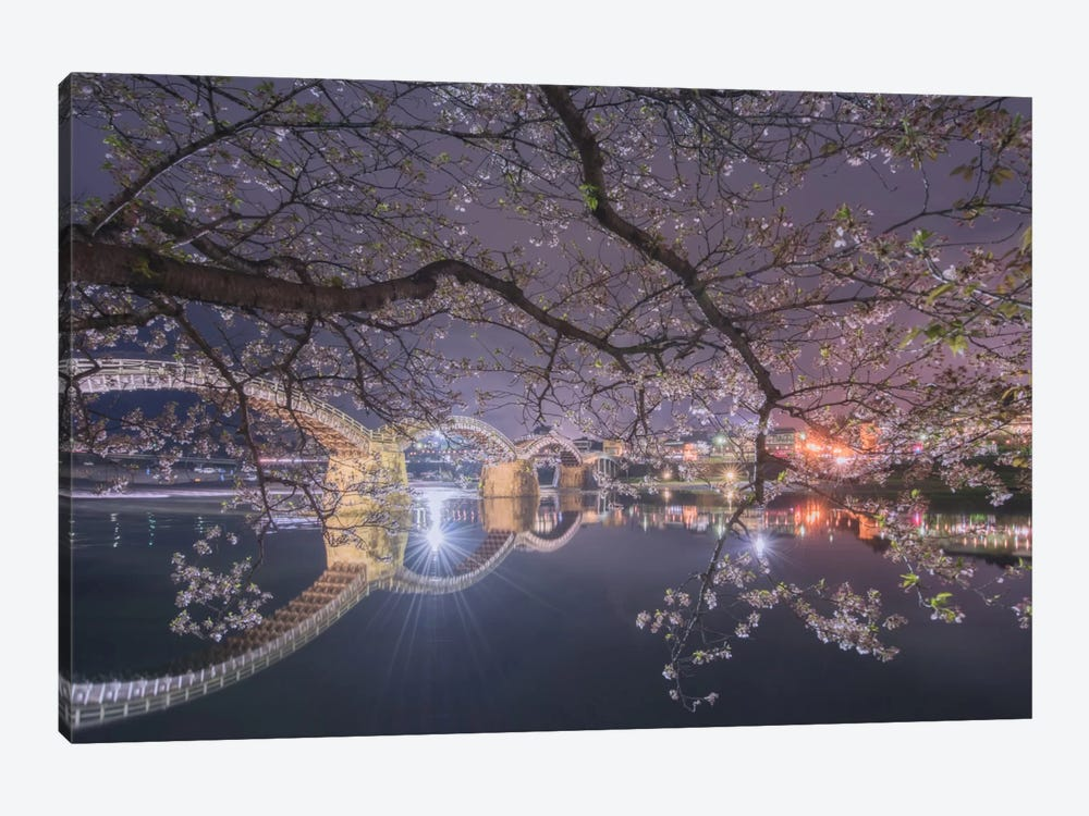 Spring In Japan VI 1-piece Canvas Wall Art