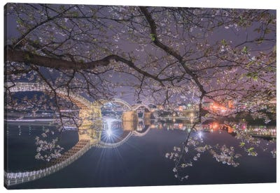 Spring In Japan VI Canvas Art Print