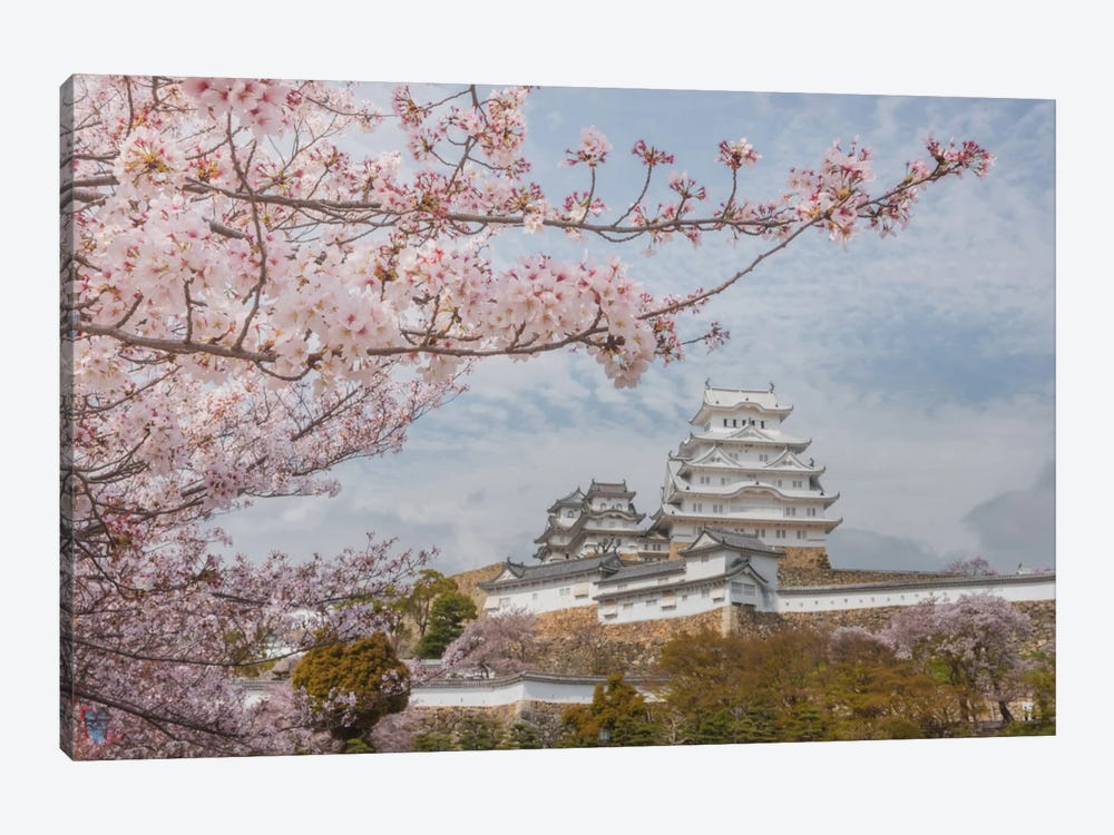 Spring In Japan VII by Daniel Kordan 1-piece Art Print