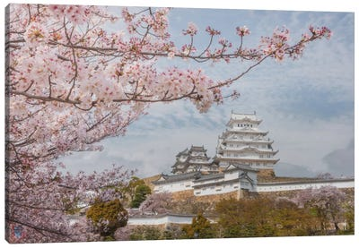 Spring In Japan VII Canvas Art Print