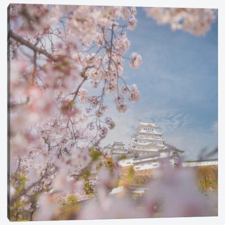 Spring In Japan VIII Canvas Print #KRD67} by Daniel Kordan Art Print