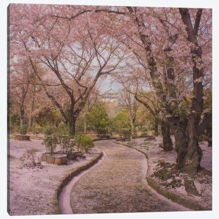 Spring In Japan IX Canvas Print #KRD68} by Daniel Kordan Canvas Art