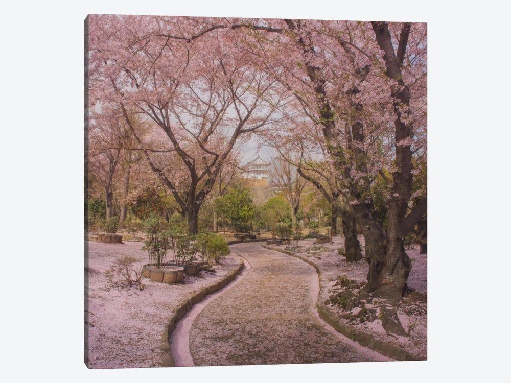 Spring In Japan IX by Daniel Kordan 1-piece Canvas Print