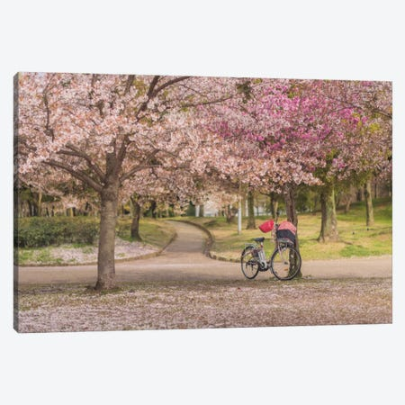 Spring In Japan X Canvas Print #KRD69} by Daniel Kordan Canvas Artwork
