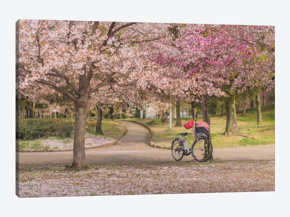 Spring In Japan X by Daniel Kordan 1-piece Canvas Artwork