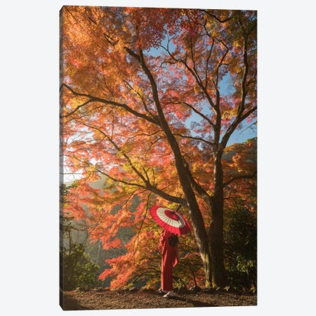 Autumn In Japan VI Canvas Print #KRD6} by Daniel Kordan Canvas Print