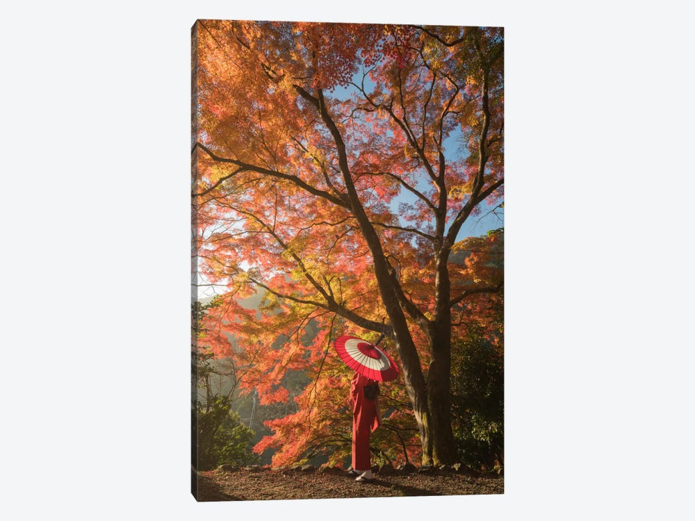 Autumn In Japan VI by Daniel Kordan 1-piece Canvas Wall Art