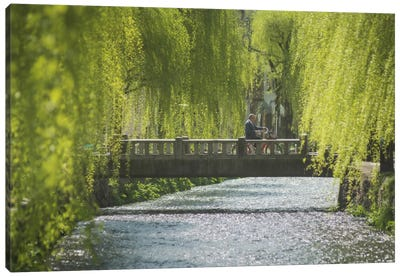 Spring In Japan XII Canvas Art Print