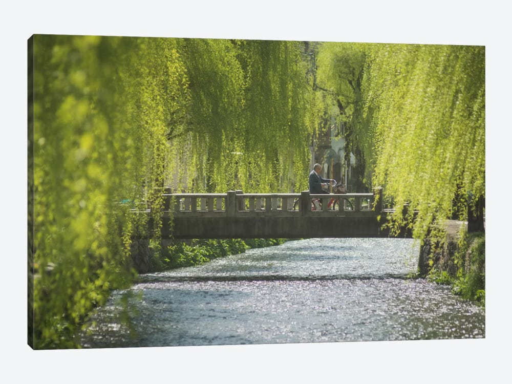 Spring In Japan XII by Daniel Kordan 1-piece Canvas Art Print