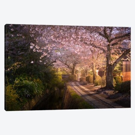 Spring In Japan XIV Canvas Print #KRD73} by Daniel Kordan Art Print