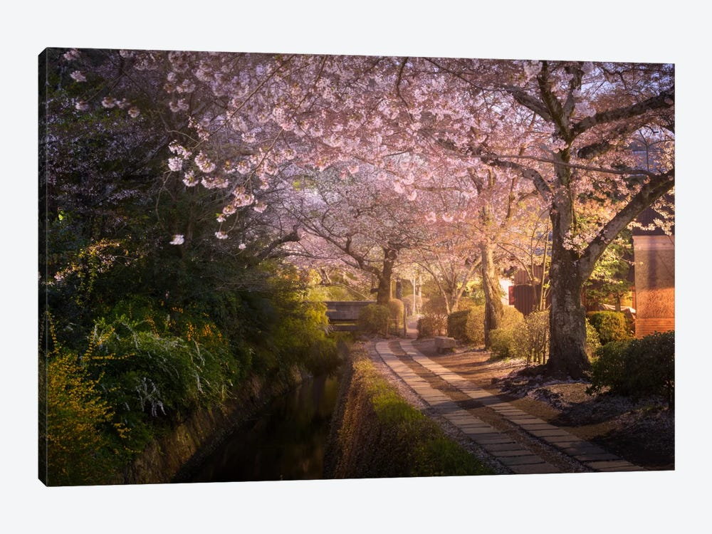 Spring In Japan XIV 1-piece Canvas Art Print