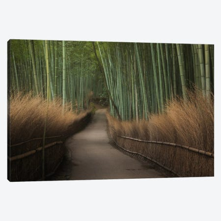 Spring In Japan XVI Canvas Print #KRD75} by Daniel Kordan Canvas Art