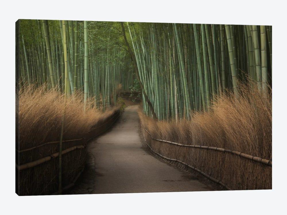 Spring In Japan XVI by Daniel Kordan 1-piece Canvas Art Print