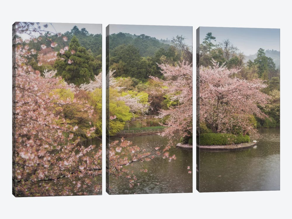 Spring In Japan XVII by Daniel Kordan 3-piece Canvas Wall Art