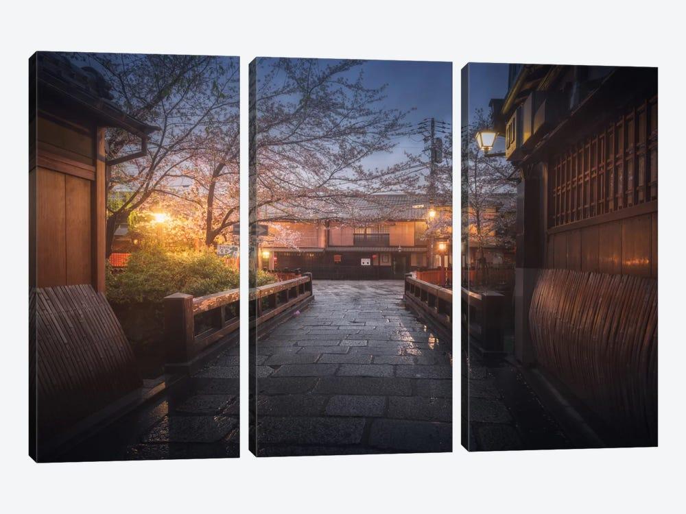 Spring In Japan XX by Daniel Kordan 3-piece Canvas Art Print