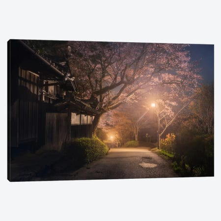 Spring In Japan XXI Canvas Print #KRD80} by Daniel Kordan Canvas Wall Art