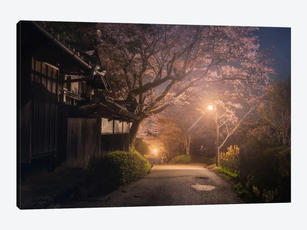 Spring In Japan XXI by Daniel Kordan 1-piece Art Print