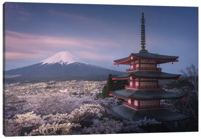 Spring In Japan XXIII Canvas Art Print