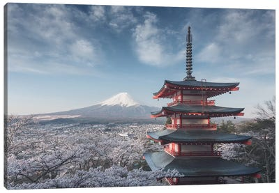 Spring In Japan XXIV Canvas Art Print