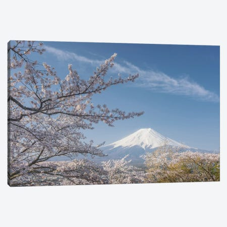 Spring In Japan XXV Canvas Print #KRD84} by Daniel Kordan Canvas Print