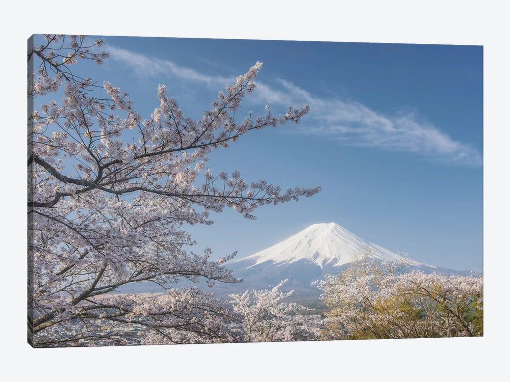 Spring In Japan XXV by Daniel Kordan 1-piece Art Print