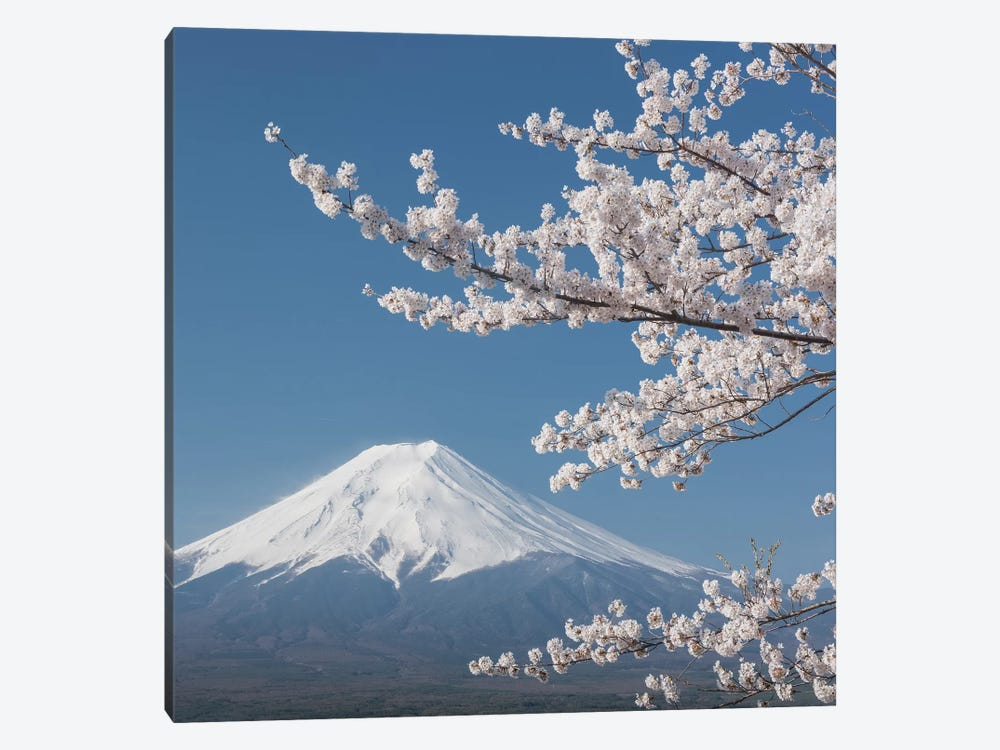 Spring In Japan XXVI by Daniel Kordan 1-piece Canvas Artwork